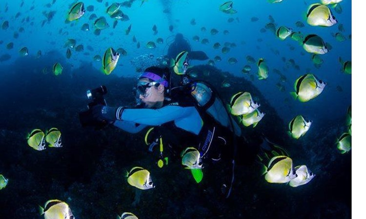 The Top Most Underwater Places To Dive In Colombia - 6 amazing underwater attractions