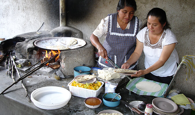 Mexico Culinary Tour Highlights