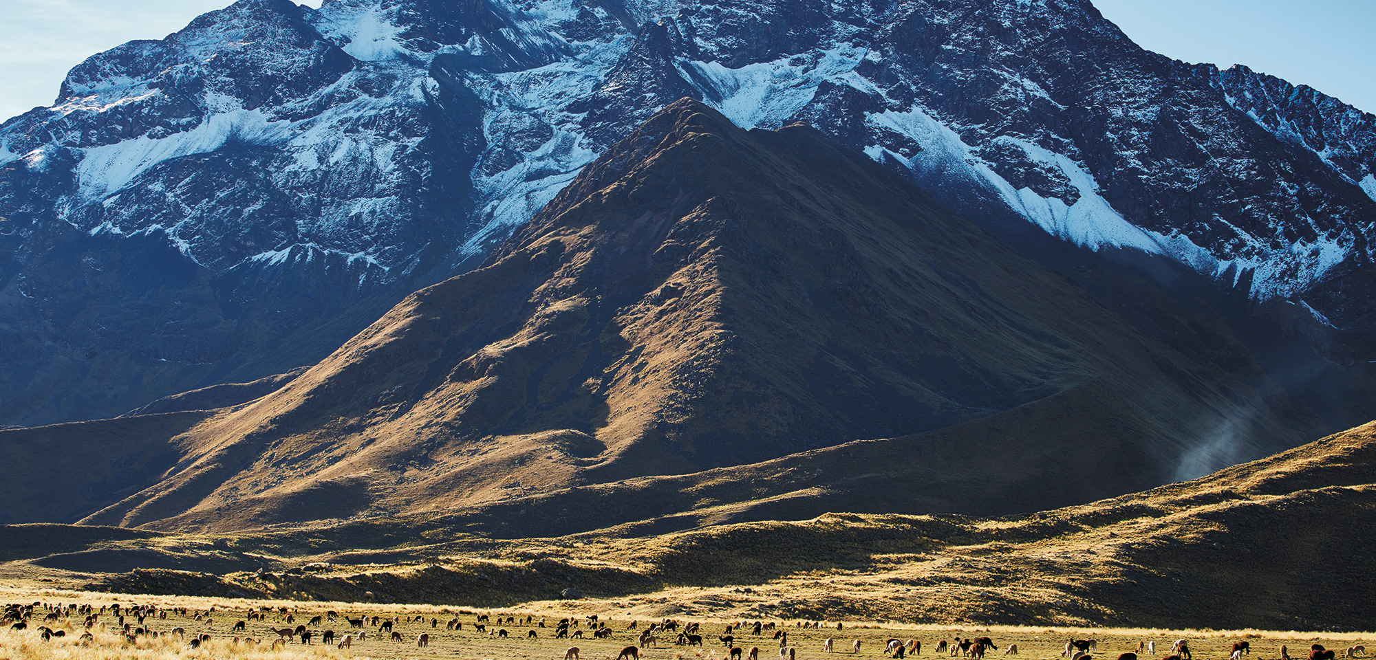Andean Explorer Train - Spirit of the Andes